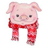 Illustrazione del fronte di porcellino del fumetto dell'acquerello royalty illustrazione gratis