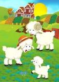 Illustrazione del fumetto con la famiglia delle pecore sull'azienda agricola Immagini Stock Libere da Diritti