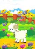 Illustrazione del fumetto con le pecore sull'azienda agricola - illu Fotografia Stock