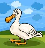 Illustrazione del fumetto dell'animale da allevamento dell'uccello dell'anatra Immagini Stock Libere da Diritti