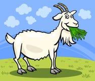 Illustrazione del fumetto dell'animale da allevamento della capra Immagine Stock Libera da Diritti