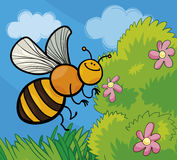Illustrazione del fumetto dell'ape del miele Fotografia Stock Libera da Diritti