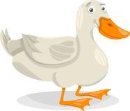 Illustrazione del fumetto dell'uccello dell'azienda agricola dell'anatra Fotografia Stock Libera da Diritti