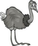 Illustrazione del fumetto dell'uccello dello struzzo di Nandu royalty illustrazione gratis