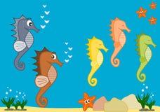 Illustrazione del fumetto di vita di mare con gli ippocampi Immagini Stock