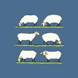 Illustrazione del gregge delle pecore illustrazione di stock