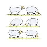 Illustrazione del gregge delle pecore royalty illustrazione gratis