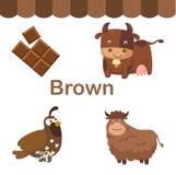 Illustrazione del gruppo marrone isolato di colore royalty illustrazione gratis