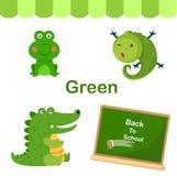 Illustrazione del gruppo verde isolato di colore illustrazione di stock