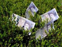Illustrazione del hedge fund fotografie stock libere da diritti