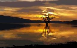 Illustrazione del lago sunset Immagine Stock Libera da Diritti