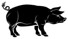 Illustrazione del maiale illustrazione vettoriale