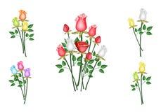 Illustrazione del mazzo delle rose isolata su fondo bianco Fotografie Stock Libere da Diritti