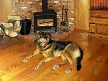 Illustrazione del migliore amico dell'uomo da un fuoco accogliente in un camino di legno rustico della stufa illustrazione vettoriale