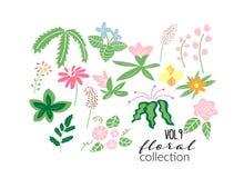 Illustrazione del prato del fiore selvaggio raccolta floreale degli elementi di vettore royalty illustrazione gratis