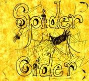 Illustrazione del sidro del ragno Fotografia Stock Libera da Diritti