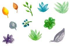 Illustrazione del succulente dell'acquerello Fotografia Stock Libera da Diritti