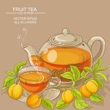 Illustrazione del tè dell'albicocca Fotografia Stock