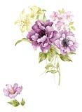 Illustrazione dell'acquerello royalty illustrazione gratis