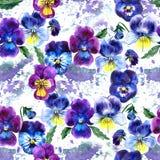 Illustrazione dell'acquerello dei fiori viola Reticolo senza giunte Viole del pensiero dell'acquerello fondo di bello acquerello Fotografia Stock