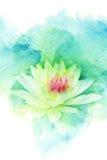 Illustrazione dell'acquerello del fiore Fotografia Stock Libera da Diritti