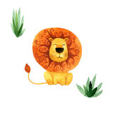 Illustrazione dell'acquerello del leone africano del fumetto su fondo bianco Fotografia Stock