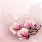 Illustrazione dell'acquerello del ramo della magnolia Fotografia Stock Libera da Diritti