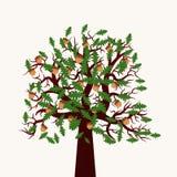 Illustrazione dell'albero di vettore Illustrazione Vettoriale