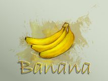 Illustrazione dell'alimento di vettore dell'acquerello della banana Fotografia Stock