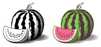 Illustrazione dell'anguria Immagini Stock