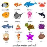 Illustrazione dell'animale subacqueo Fotografie Stock