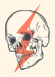 Cranio concettuale illustrazione vettoriale