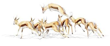 Illustrazione dell'antilope saltante fotografia stock libera da diritti