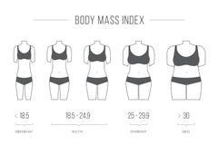 Illustrazione dell'indice di massa corporea, figura femminile Immagini Stock