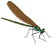 Illustrazione dell'insetto della zanzara Immagini Stock