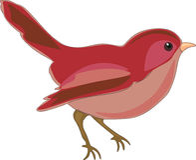 Illustrazione dell'uccello Fotografie Stock Libere da Diritti