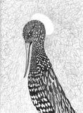 Illustrazione dell'uccello di amore Fotografie Stock