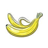 Illustrazione della banana di vettore su fondo bianco Immagini Stock Libere da Diritti