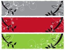 Illustrazione della bandiera di colore del fiore   Immagine Stock Libera da Diritti