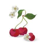 Illustrazione della ciliegia nello stile di origami illustrazione di stock