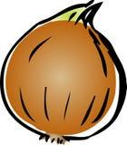 Illustrazione della cipolla Immagine Stock Libera da Diritti