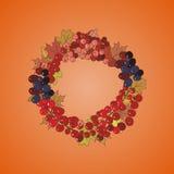 Illustrazione della corona con i mazzi di bacche e di foglie di autunno Immagini Stock Libere da Diritti