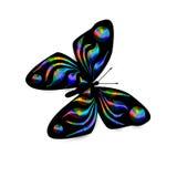 Illustrazione della farfalla del Rainbow illustrazione vettoriale