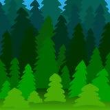 Illustrazione della foresta di conifere Fotografie Stock Libere da Diritti