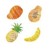 Illustrazione della frutta tropicale illustrazione vettoriale