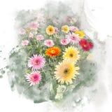 Illustrazione della gerbera del fiore Fotografie Stock