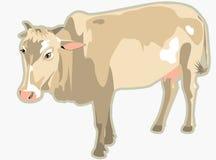 Illustrazione della mucca Fotografia Stock