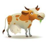 Illustrazione della mucca Immagine Stock