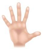 Illustrazione della parte del corpo della mano Immagine Stock