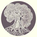 Illustrazione della quercia Vettore stilizzato isolato Immagini Stock Libere da Diritti